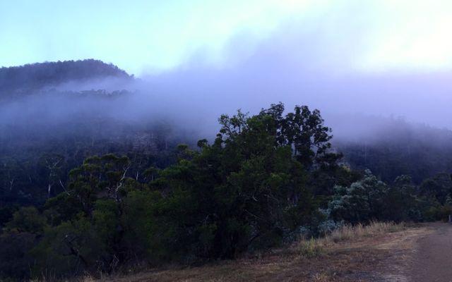 20150322 WIHS Day 7 14 Mist